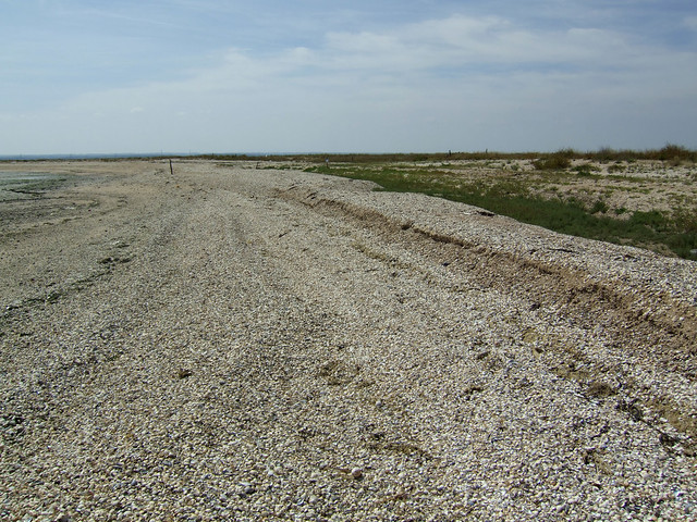 Shell Ness, Isle of Sheppey