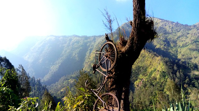 On the road go to Cemoro lawang village.