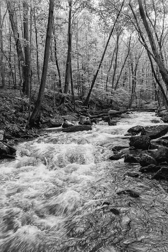 hike bw pembroke virginia unitedstates cascades littlestonycreek jeffersonnationalforest blackandwhite landscape polarizer