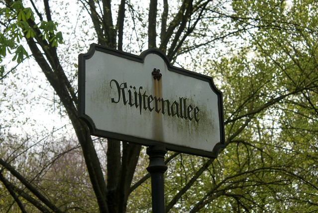 Die Rüsternallee im Berliner Tiergarten