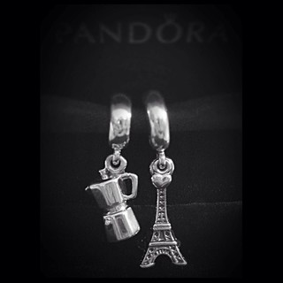 FMS Photo A Day May 21 - Memories #fmspad #fmsphotoaday #fms_memories #italy #ladinitaly2017 #paris #ladinparis2017 #catchingup #betterlatethannever #pandora #charm #charms #bracelet #pandorabracelet #pandoracharmbracelet #pandoracharm #pandoracharms | by Laurel Storey, CZT
