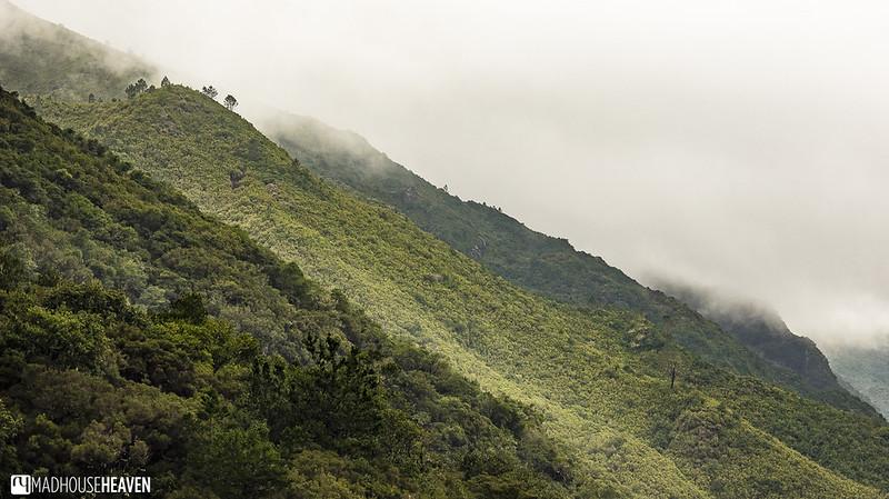 Madeira - 0057