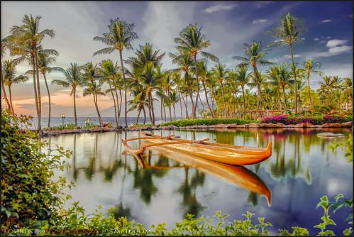 hawaii maui oahu sunset ocean surf canoe water coastal resort hotel grandwailea beautiful trees coconut palms