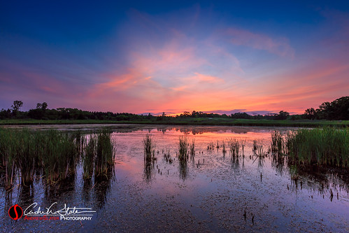 andrewslaterphotography brighton burlington camp clouds country discoverwisconsin grass kansasville lagoon landscape nature outdoors place richardbongstatepark rural summer sunrise swamp travelwisconsin travelwi wi water wisconsin countryside enviroment canon 5dmarkiii leefilter graduatedndfilter