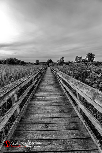 andrewslaterphotography architecture blackwhite bridge brighton burlington camp clouds country discoverwisconsin grass kansasville lagoon landscape nature outdoors place richardbongstatepark rickety rural summer sunrise swamp travelwisconsin travelwi wi water wisconsin countryside environment unitedstates us woodenpath woodenbridge