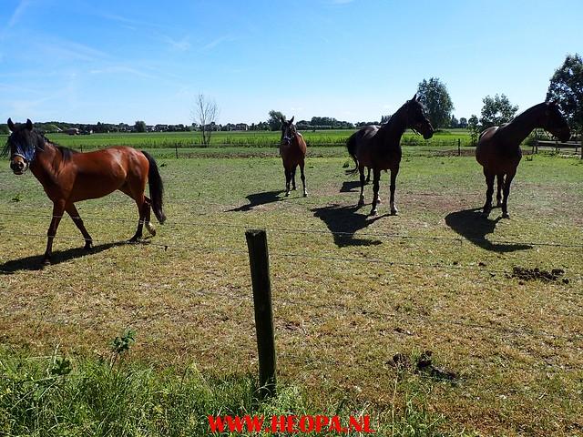 2017-06-14   Zijderveld 25 Km  (23)