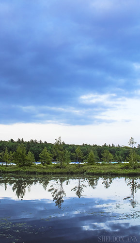 water trees lake reflection sky clouds blue green nature landscape moose pond bridgton maine tree canon