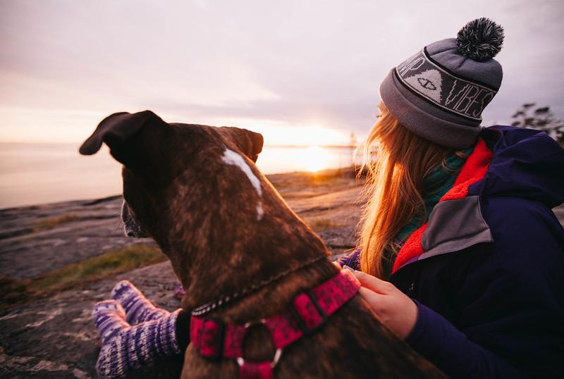 Kansallispuistot koiran kanssa retkeily