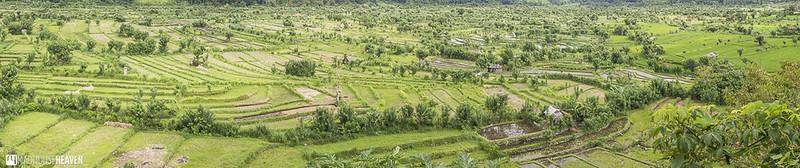 Indonesia - 0063-Pano