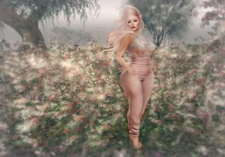 I never promised you a rose garden | by Lucie Bluebird-Lexington