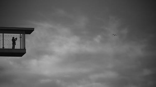 blackwhite canoneos5dmarkiii ef75300mmf456iii monochrome sky seagull clouds bw man balcony view snfccstavrosniarchosfoundationculturalcentre evening greece athens streetlife streetphotography bird minimal light