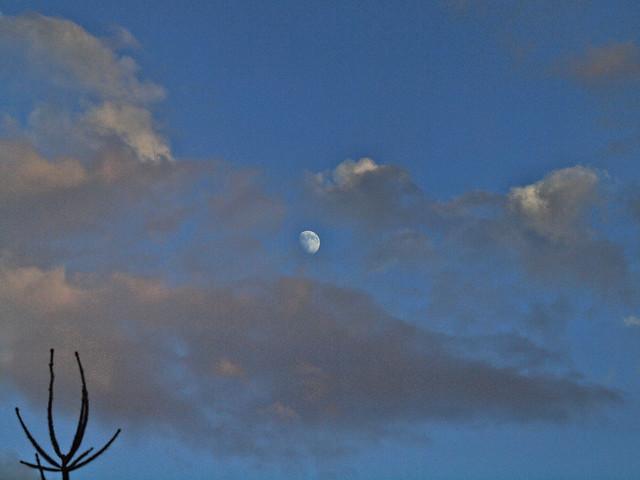 mit Mond_001