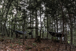 The Hanging Camp