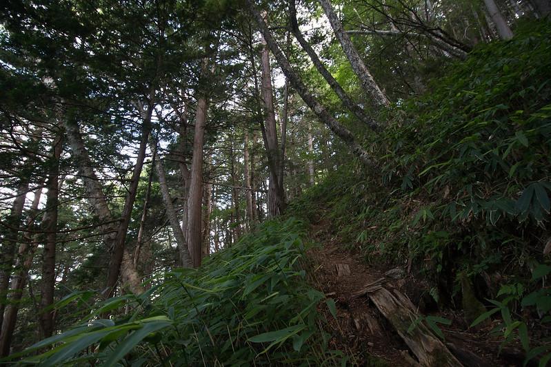 20150808-空木岳-0079.jpg