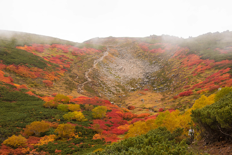 20150918-大雪山黒岳-0771.jpg