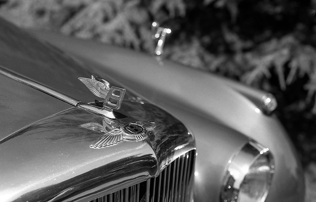 FILM - Bentley