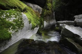 Natures Passage | by Matt Newfield