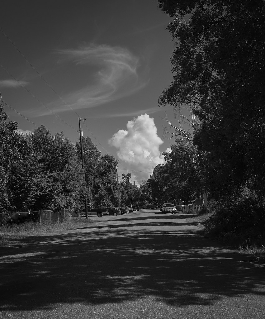 Summer Solstice Fairbanks Shared-38