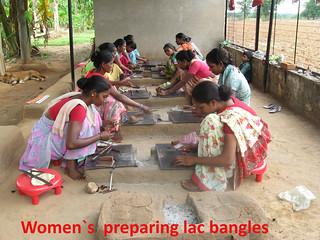 Proyecto Dalmadih (India) (11)