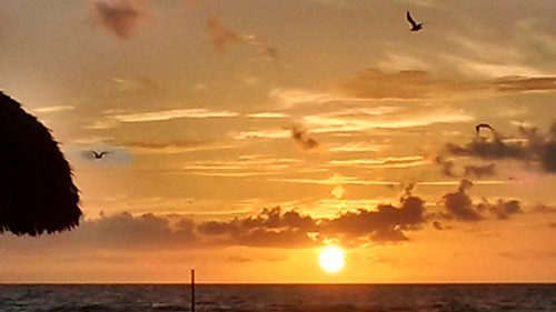 sunrise playas beach sunnyislesbeach miami nwn
