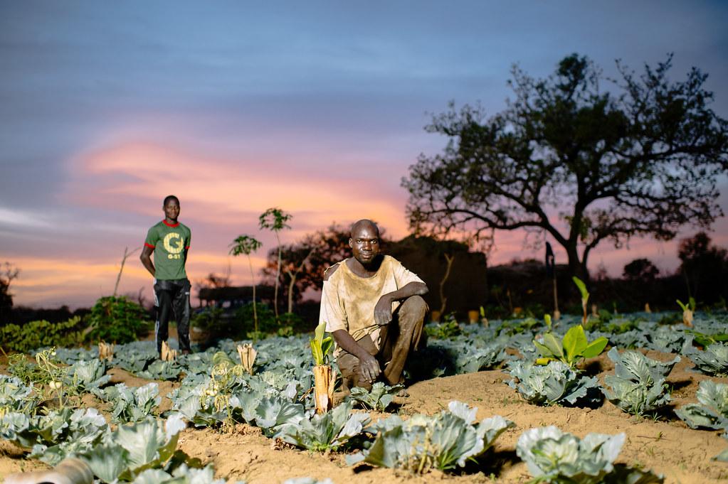 Garden of Sanfo Karim, Burkina Faso