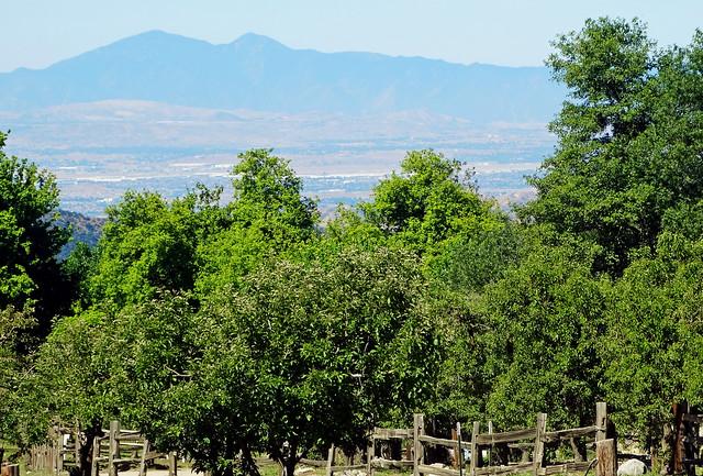 Above and Beyond, Oak Glen, CA 5-20-17