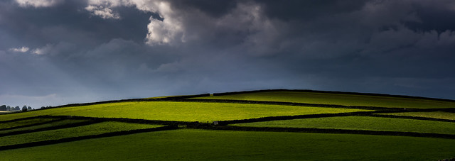 Storm Clouds and Golden Fields