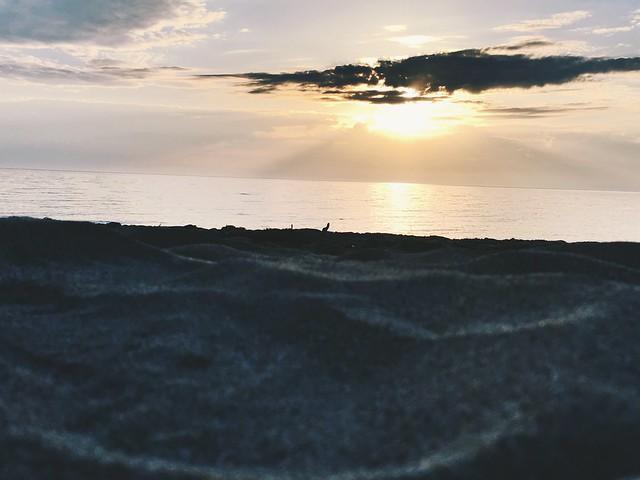 Beach at dawn II