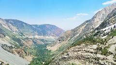 Lovz2hike - Tioga Pass and Stream 7/2/17