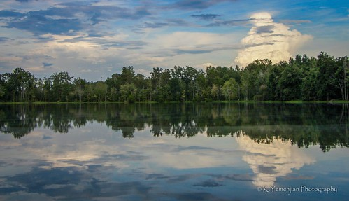 dslr nature beautyofnature skyline clouds bluesky tree trees water pond gaaugusta augustaregionalairport augusta natural reflection mirror southeast georgia georgiausa canon t5i canont5i 700d canon700d placescity