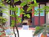 珠山20號民宿(慢漫民宿-古典館)中庭樹影