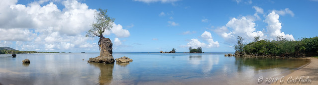 The Littlest Island