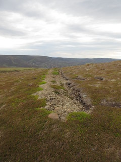 Strange trenches dug across the hillside. Why? | by malky_c