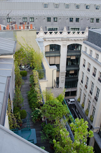 Terrasse parisienne | by Bee.girl