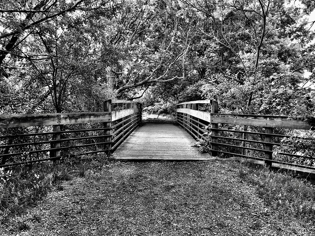 Gallup Park, Ann Arbor