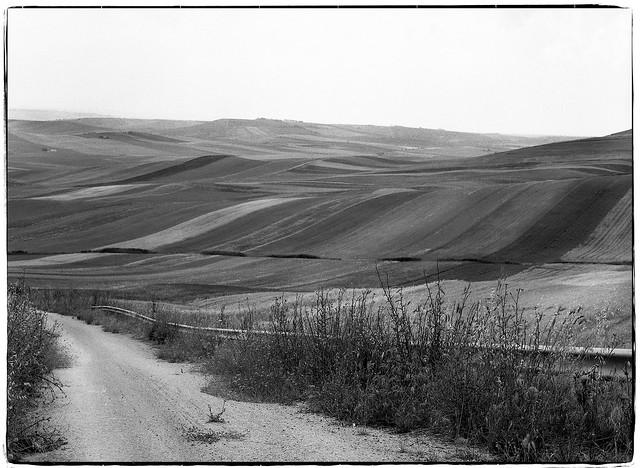 Abandoned path - Murge