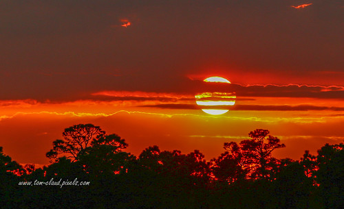 sun sunset sky red redsky weather trees clouds cloudy nature mothernature outdoors outside fortpierce florida usa landscape