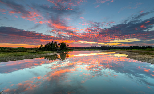 newforest slufters pond reflection sunrise dawn cloud water landscape
