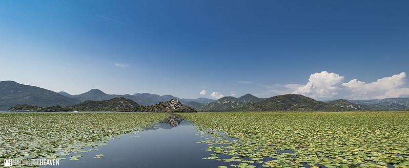 Montenegro - 5784