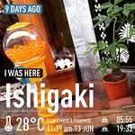#魚子 #扭蛋 🐣 #orange #capsule #vending #machine #UFO #Ishigaki 🎌