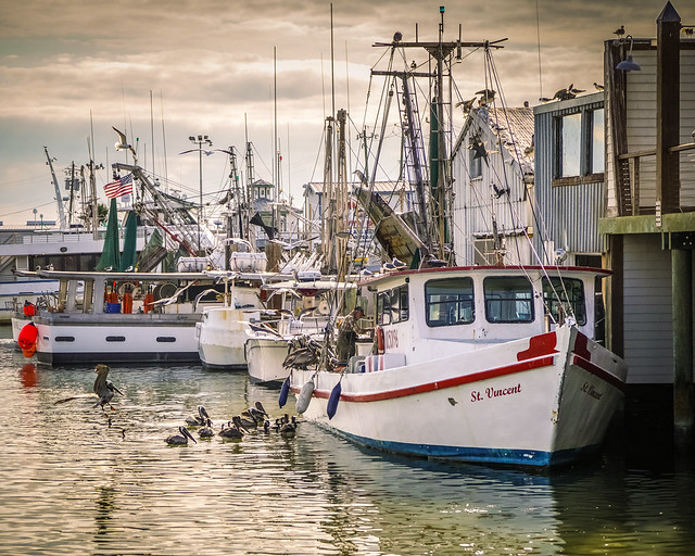 Galveston_151-2