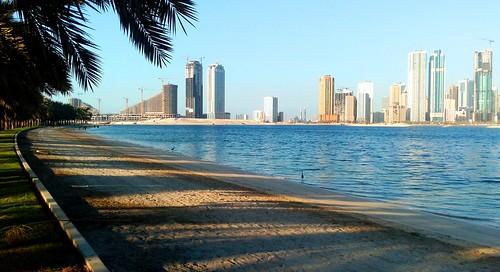 sharjah uae emirates city sea lake water architecture summer palms light shadows coast beach sand trees sky buildings skyscraper eau landscape