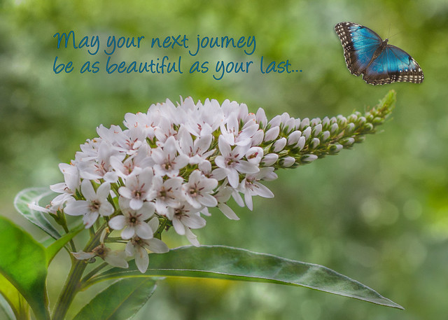 May Your Next Journey Be As Beautiful As Your Last...