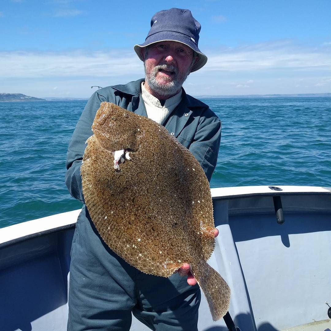 Very nice brill for Mike #amarisaweymouth #brill #fishingtrip #fishinguk
