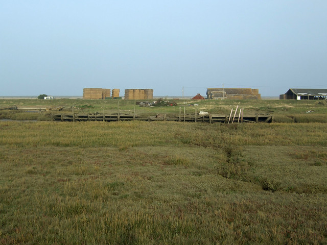 Allhallows Marshes, Isle of Grain