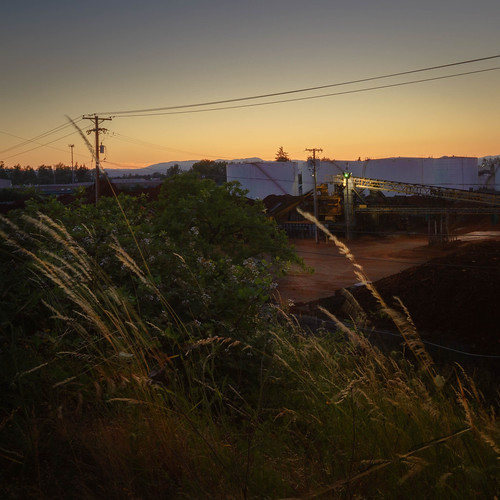 lanecounty tank eugene builtlandscape sunset recycling oil industry oilandgas evening tankfarm oregon soil mulch industriallandscape barkscreen grass goldenhour pacificnorthwest telephonepoles telephonelines america pnw upperleftusa dusk magichour twilight