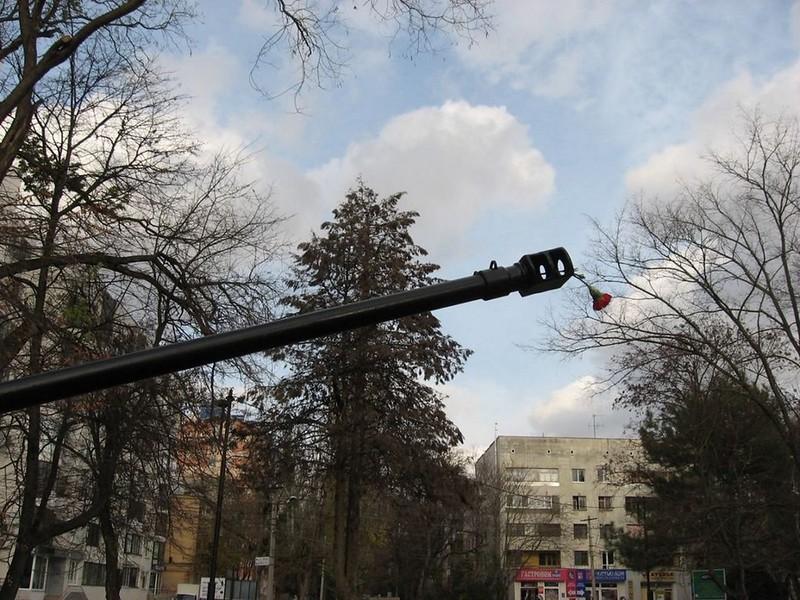 BMP-2 2