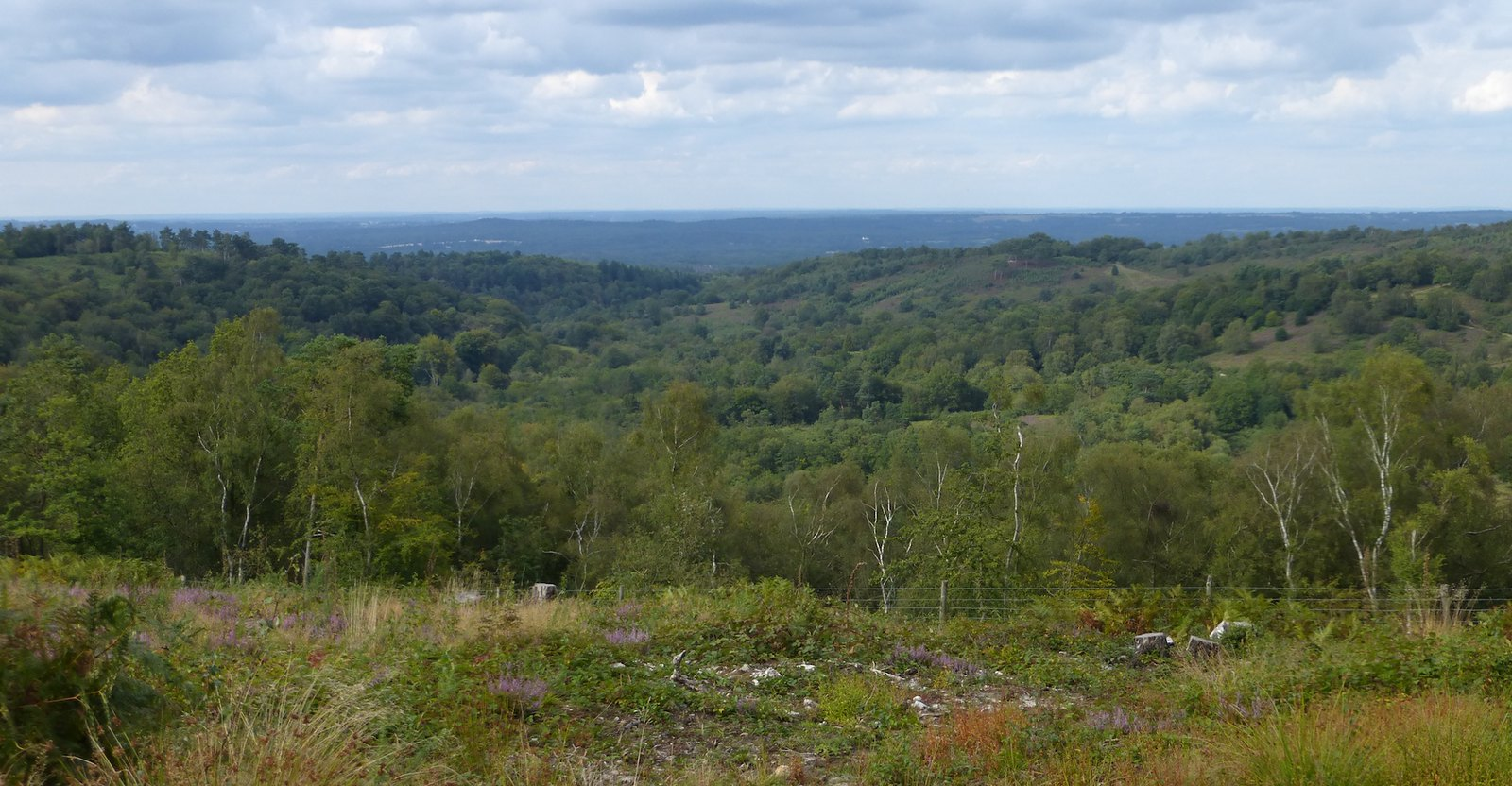Devil's Punchbowl view Milford to Haslemere walk