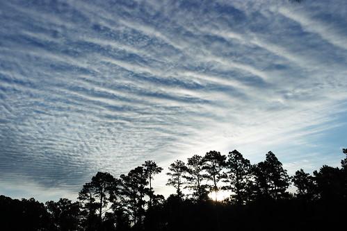 clouds sunrise nc northcarolina altocumulus cravencounty fairfieldharbour cloudsstormssunsetssunrises altocumulousundulatus