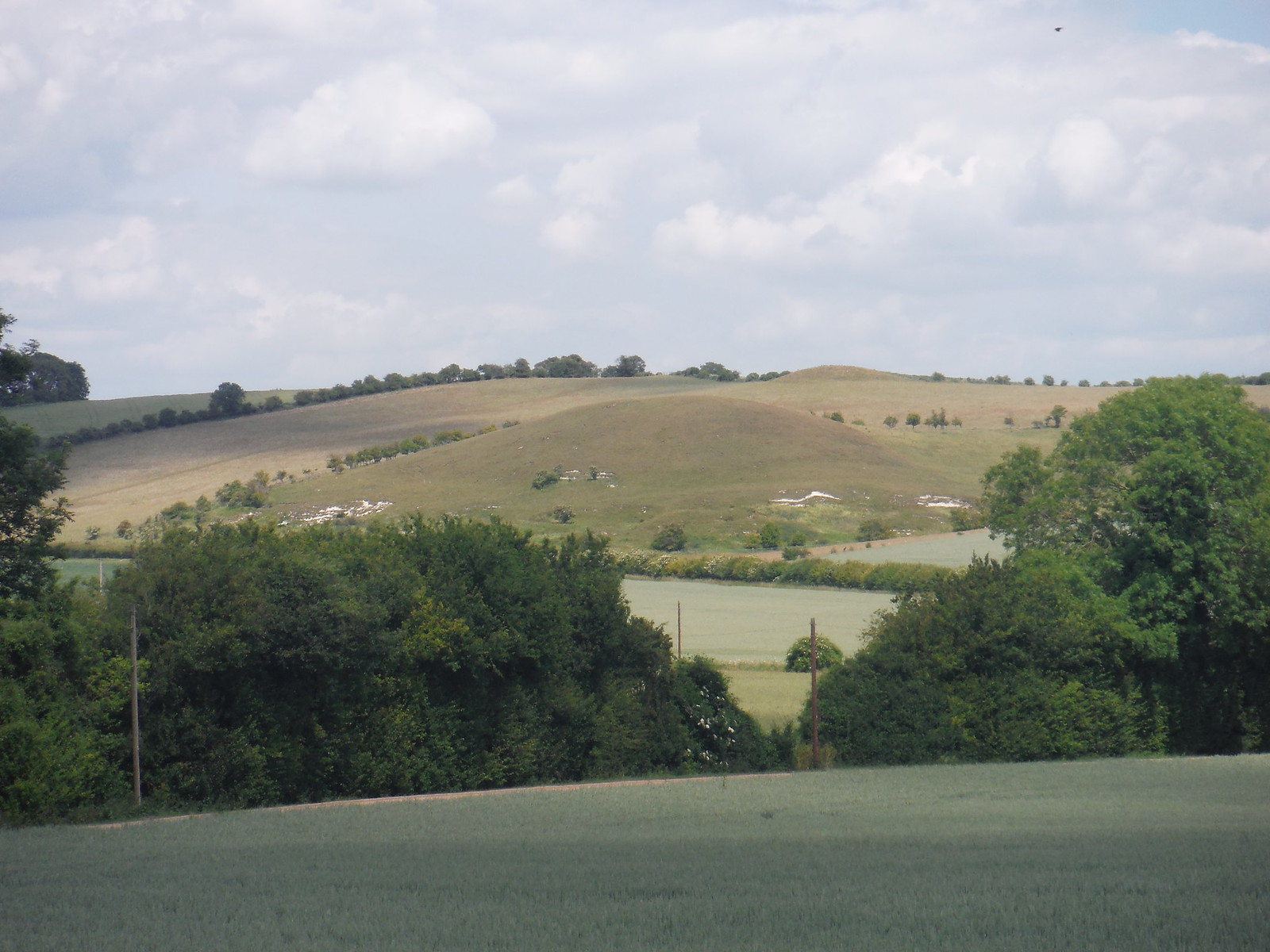 Pegsdon Hills from Knocking Hoe SWC Walk 234 Hitchin Circular